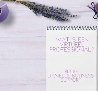 Wat is een virtueel professional