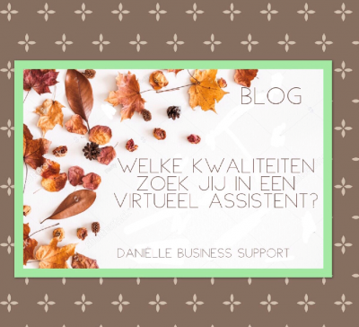 Welke kwaliteiten zoek jij in een virtueel assistent